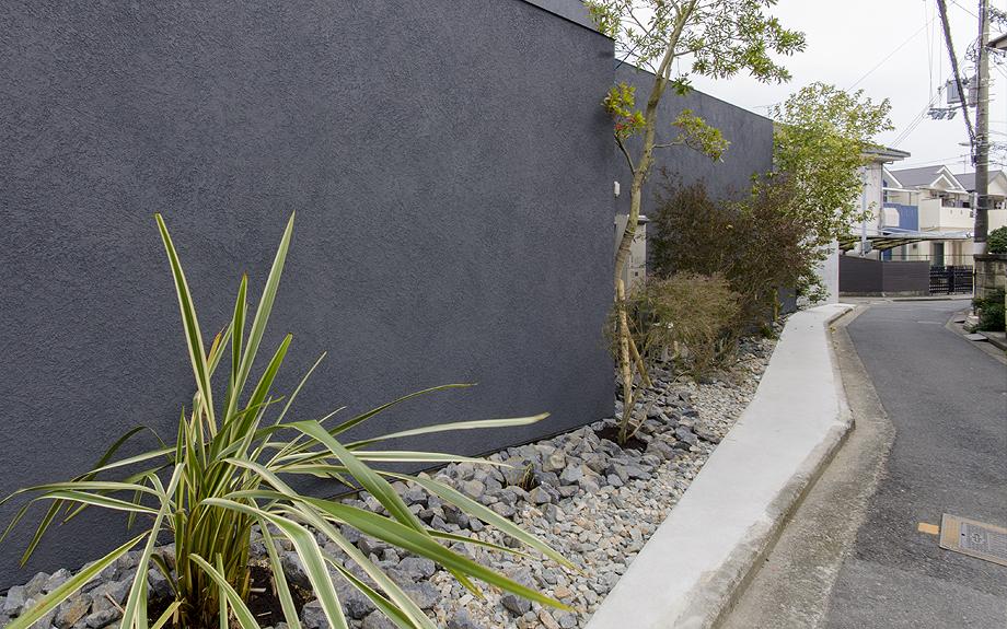 堺市百舌鳥のコートハウス 植物の写真