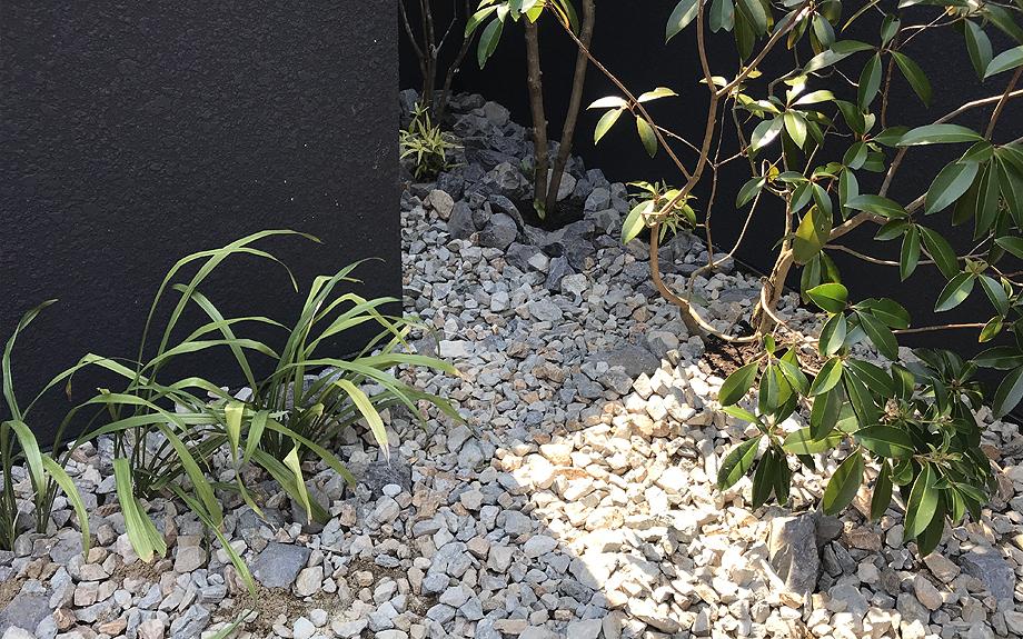 八尾の中庭型住宅 植栽の写真