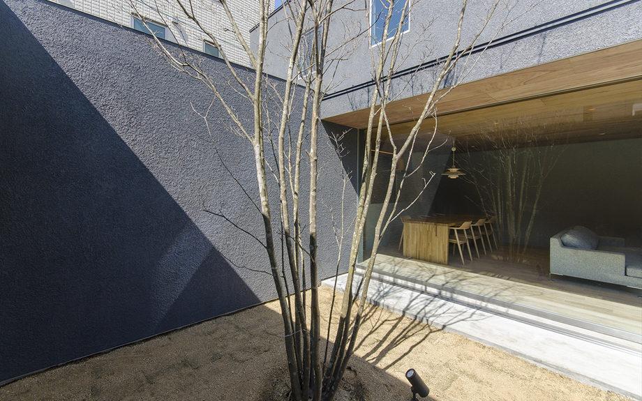 大阪市内に建つ中庭を持つコートハウス。中庭に植えられたヤマボウシ