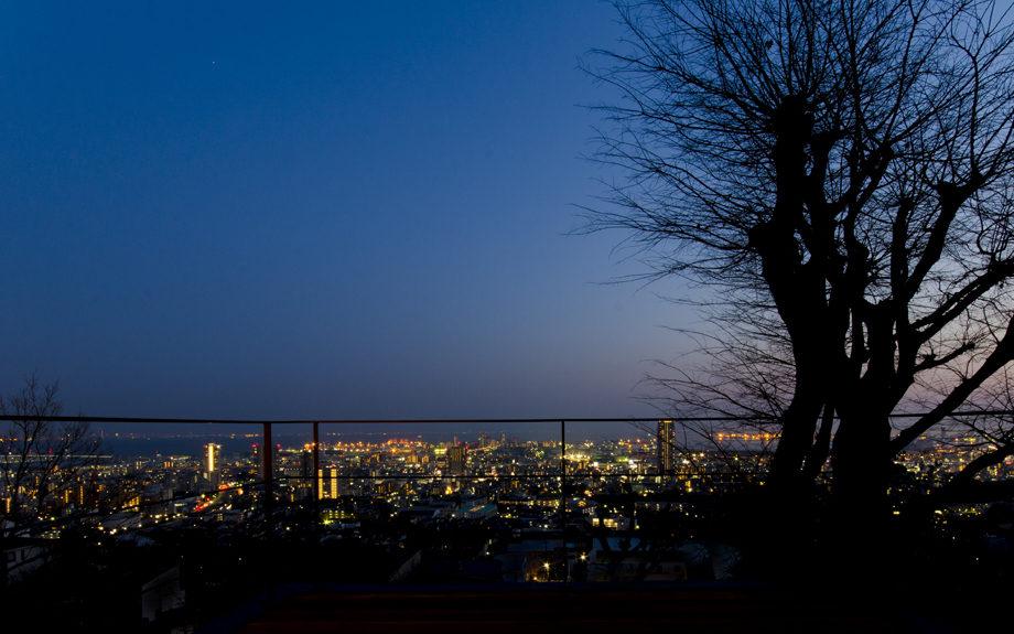 テラスより神戸の夜景を望む